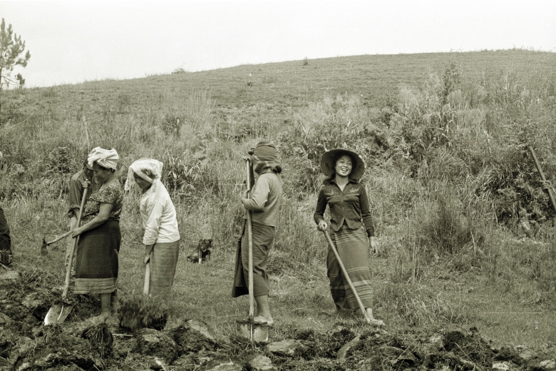 Four people use shovels to work soil in a field.