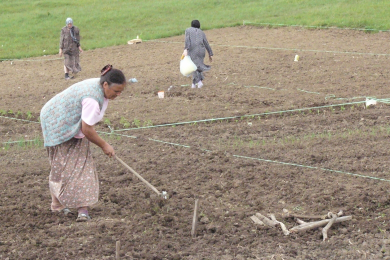 Women work the soil in a field.