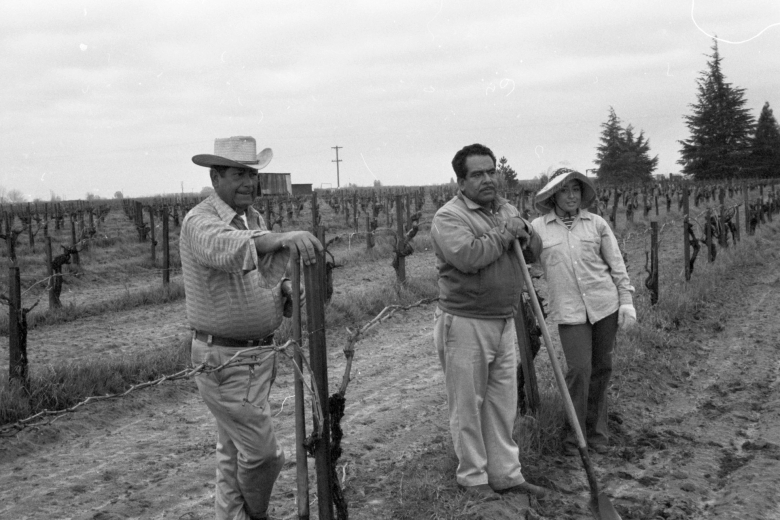 Two men and woman stand in a vineyard, one leaning on a shovel.