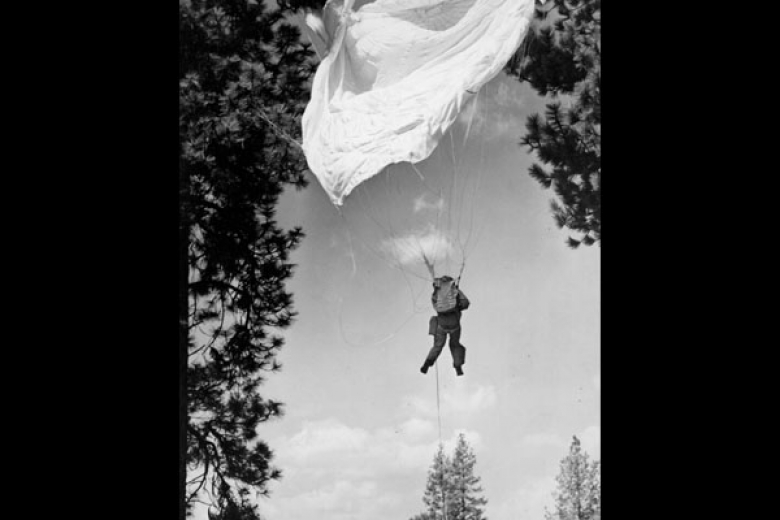 Person in a parachute landing between trees