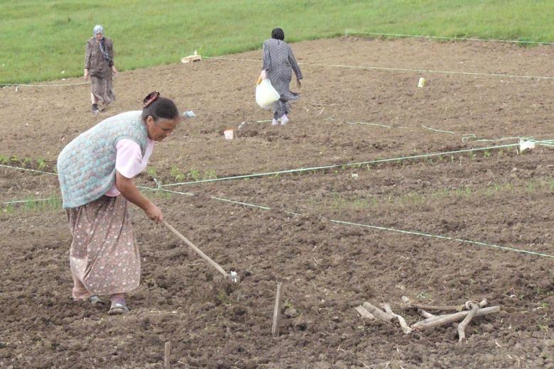 Women work the soil in a field.